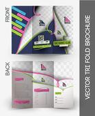 Dance Academy Tri-Fold Mock up & Brochure Design