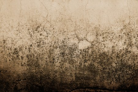 Photo for Fragment of an abstract wall close up - Royalty Free Image