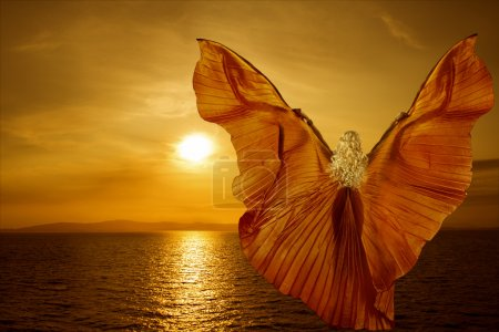 Photo pour Woman transform with butterfly wings flying on fantasy sea sunset, reincarnation meditation concept - image libre de droit