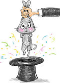 Magic trick - Rabbit and magic hat
