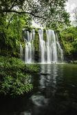 Llanos de Cortez Waterfall-Pond
