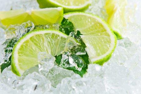 Photo pour Tranches de citron vert et feuilles de menthe glacée - image libre de droit