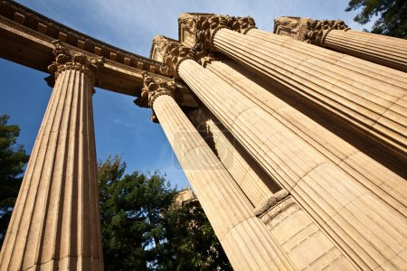 Ancient columns in a park