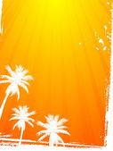 Summer, palm