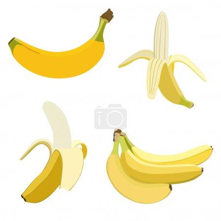 Illustration for Set of bananas. Isolated on white - Royalty Free Image