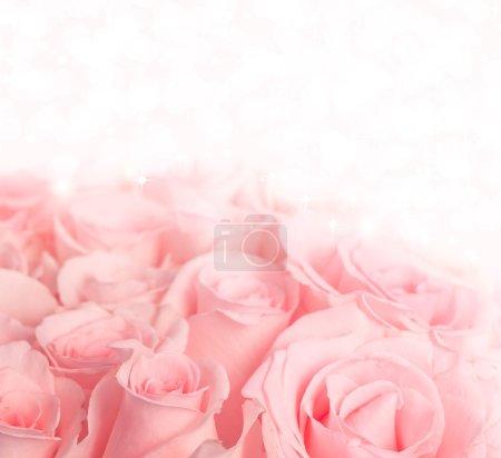 Foto de Hermosas rosas sobre fondo de colores pastel con luces y estrellas - Imagen libre de derechos