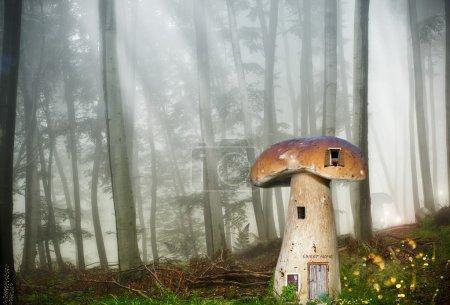 Foto de Seta cabaña en un bosque de cuento - Imagen libre de derechos