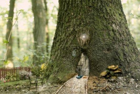 Foto de Casa de hadas en el árbol, cuadro de fantasía con el árbol y el bosque, cuento de hadas - Imagen libre de derechos