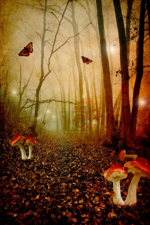 Foto de Champiñones rojizos en un bosque de cuento, foto de fantasía. - Imagen libre de derechos