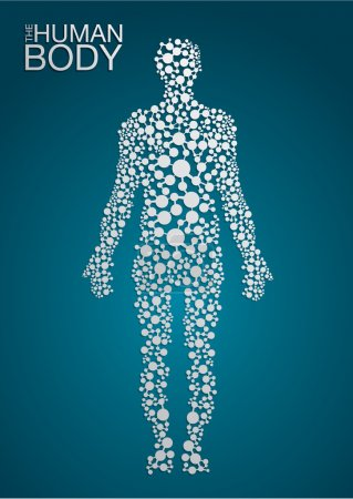 Illustration for The Human Body concept in editable vector format - Royalty Free Image