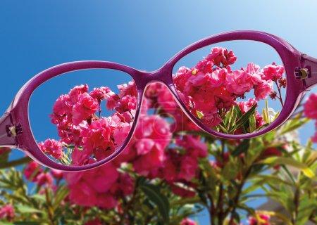 Vue depuis les lunettes de vue de lecture sur belle vue sur la nature