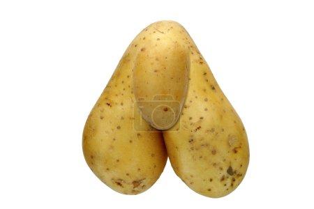 Photo pour Détail de la pomme de terre bizarre - macro - numériquement modifié - image libre de droit