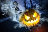 Scary halloween pumpkin in the dark forest