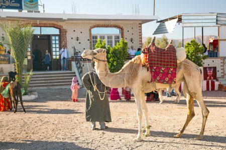Arabic man with camel posing to pictures in Egypt