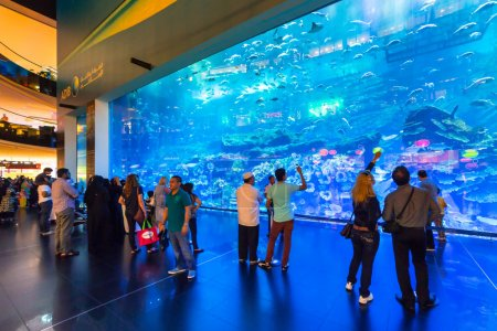 People in front of the Oceanarium inside Dubai Mall.