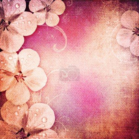 Photo pour Vintage fond romantique avec des fleurs - image libre de droit