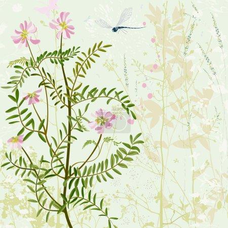 Card wirh summer grass