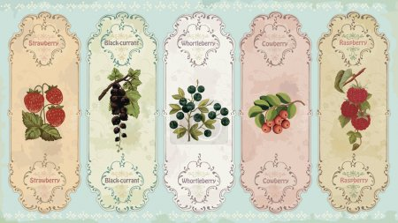 Vintage labels with berries