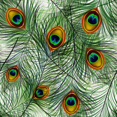 Beautiful vector seamless pattern with peacock feathers.