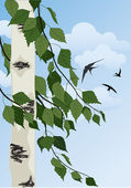Summer landscape with birch trees blue sky and swallows