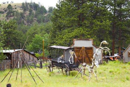 Photo pour Affichage des squelettes de l'homme et du cheval dans l'ouest sauvage - image libre de droit