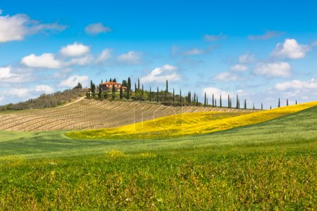 Tuscan farmhouse with green and yellow fields