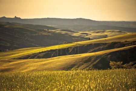 Photo pour Paysage extérieur des collines d'or toscanes au coucher du soleil. Plan horizontal - image libre de droit