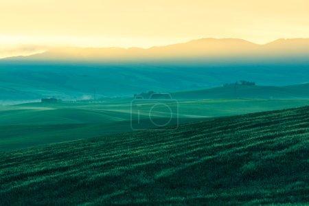 Morgennebel Blick auf Ackerland in der Toskana, Italien