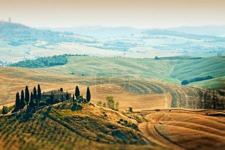 Belvédère de la Toscane