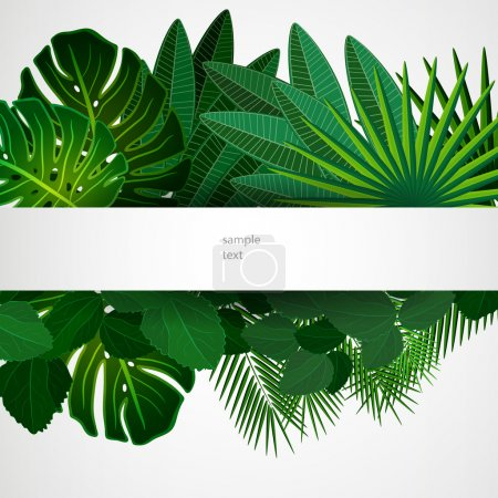 Illustration for Tropical leaves. Floral design background. - Royalty Free Image