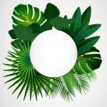 Tropical leaves. Floral design background....