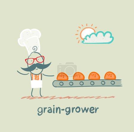 Grain grower looks at the conveyor rolls