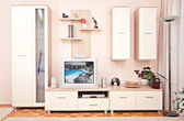 interior room furniture with shelve and TV set