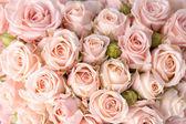 """Постер, картина, фотообои """"яркие розовые розы фон"""""""