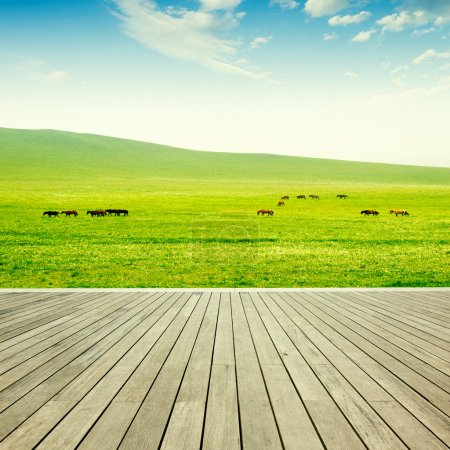 Wood flooring and grassland