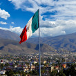 A large Mexican Flag flying at the Port of Ensenad...