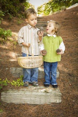 Photo pour Adorable frère et sœur enfants avec panier Collecter cônes de pin à l'extérieur . - image libre de droit