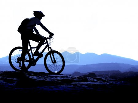 Photo for Mountain biking up a trail in the mountains - Royalty Free Image