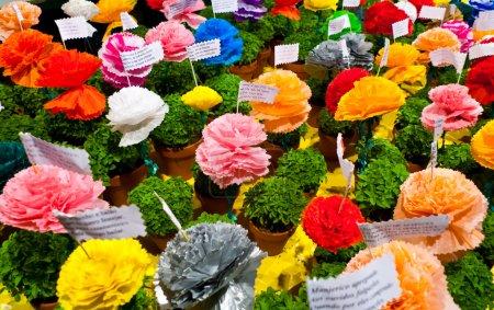 Photo pour Fête des saints populaires à Lisbonne, portugal. manjerico traditionnel, des plantes peu en pot de basilic nouvellement germé sont donnés comme cadeaux pendant le mois de juin. fleurs colorées de papier-mâché sont placés dans des pots aux côtés d'un des nombreux versets populaires un - image libre de droit