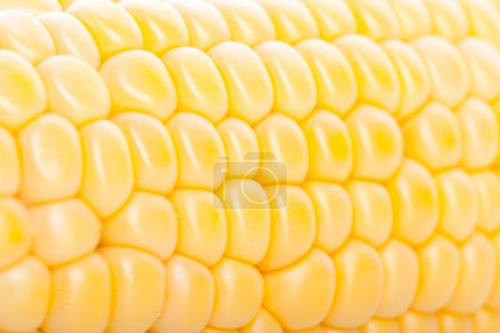 corn pieces on the cob