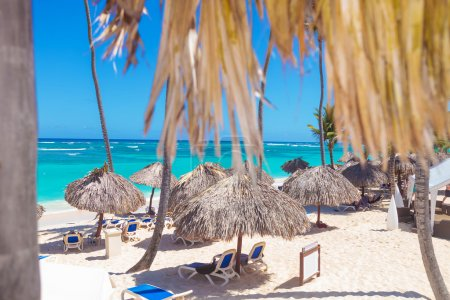 beach with straw umbrellas in punta cana