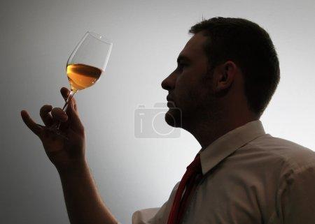 Photo pour Expert du vin tester l'image de la silhouette du vin - image libre de droit