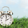 Clock in grass. Daylight saving time concept....