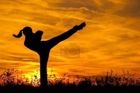 Silhouette of beautiful kick boxing girl exercising high kick in the nature on sunny summer day.