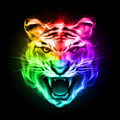 Head of tiger blazing in spectrum fire on black background