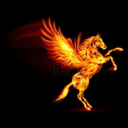 Fire Pegasus rearing up. Illustration on black bac...