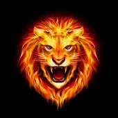 Head of fire lion