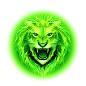 Tűz oroszlán fej