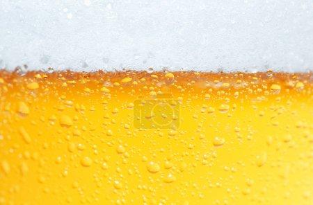Beer an Foam.