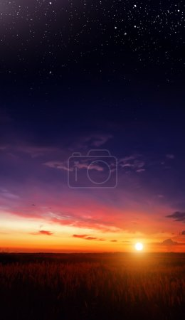 Photo for Sunset in the field and the stars - Royalty Free Image